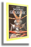 NATIONAL GEOGRAPHIC 3/1998: Marine Sanctuaries * Naples * Rise of Life * National Road * Beetles * Nenets - National Geographic Society